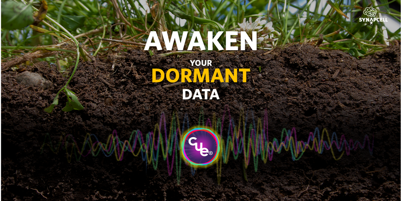 SynapCell-Awaken-Dormant-Data